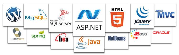 Web development platforms
